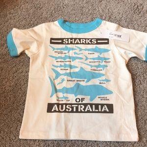 Peek shark short sleeve tee shirt, NWT
